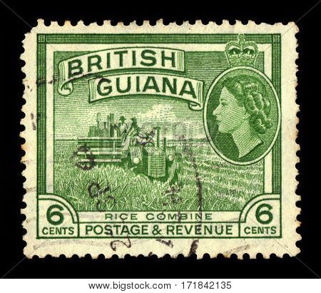 British Guiana - circa 1954: A stamp printed in United Kingdom shows rice harvesting with combine harvester, series Queen Elizabeth II and local scenes, circa 1954