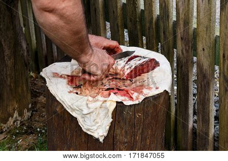 Fish On Stump Is Cut With Sharp Knife. Carp Sea