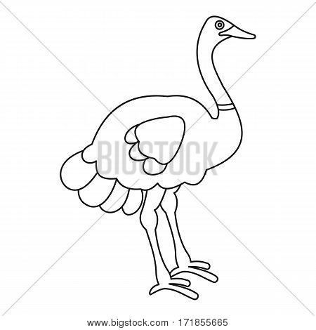 Ostrich icon. Outline illustration of ostrich vector icon for web
