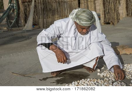 Muscat Oman February 4th 2017: old fisherman playing with sea chelles