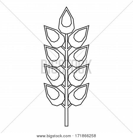 Long spica icon. Outline illustration of long spica vector icon for web