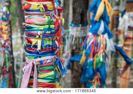 Trees tied with colored ribbons in the Buddhist religion
