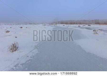 lake in winter. Location: Comana Natural Park Romania.