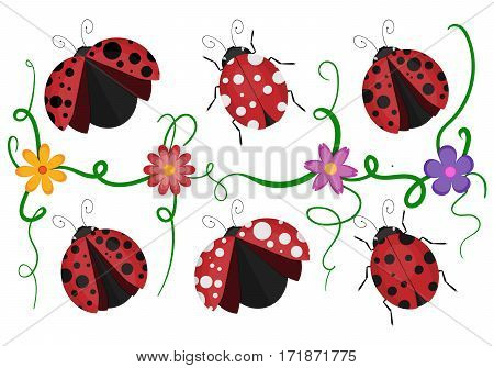 Ladybird beetles with shiny red and black spotted wing vector pattern of crawling ladybugs and colorful flowers isolated white background.