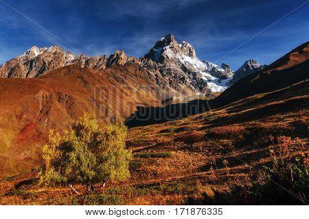 Autumn landscape and snowy peaks in the sun. Main Caucasian Ridge. Mountain View from Mount Ushba Mheyer, Georgia. Europe