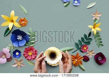 Flower Plant Floral Nature Designs