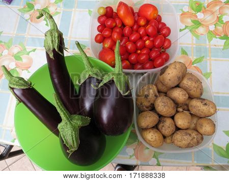 eggplant, potatoes and tomatoes in biologic garden