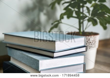Pile of books and houseplant on floor in the room