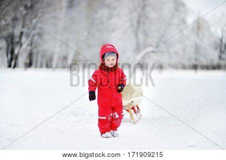 Little Boy Enjoying A Sleigh Ride