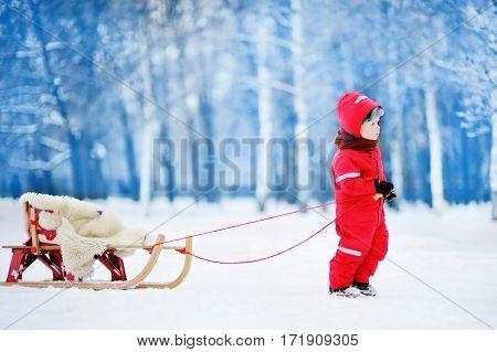 Little Boy Enjoying A Sleigh Ride. Child Sledding