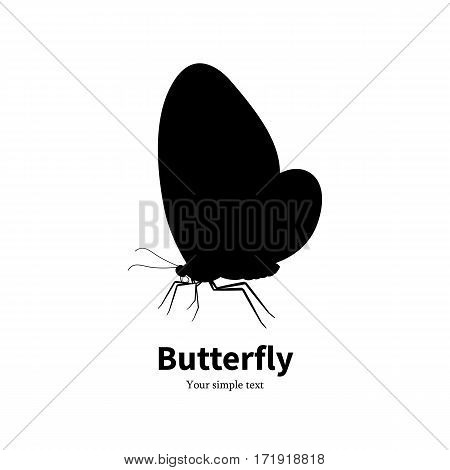 Vector illustration black silhouette butterfly. Isolated white background. Icon logo beautiful butterfly side view, profile. Sign insect with wings.