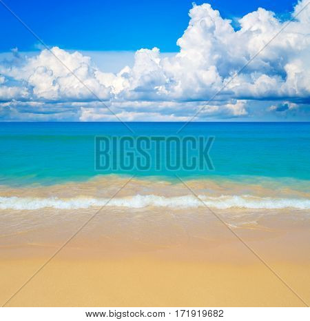 Sunny yellow sand beach travel background.