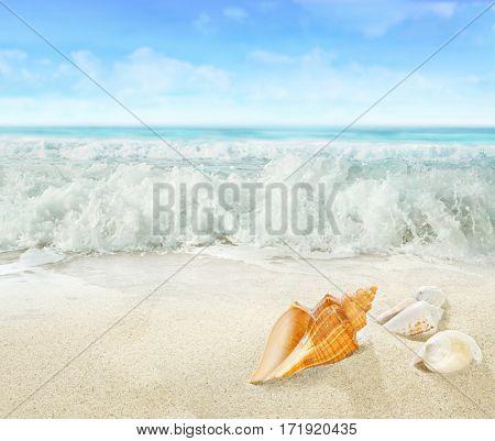 Splashing waves on the beach.
