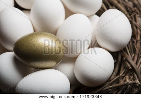 Financial Success finding the Golden Egg and standing out from the crowd closeup