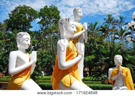 White Buddhas gathered in praise in Thailand