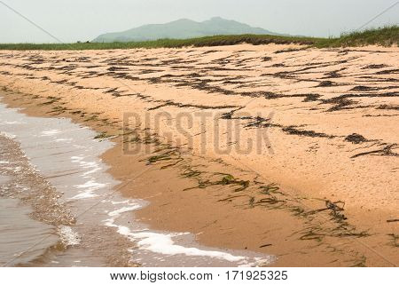 Empty seaside with traces several lines of the seaweed on the shore.