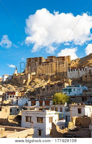 Leh Palace Hill Front View Houses V
