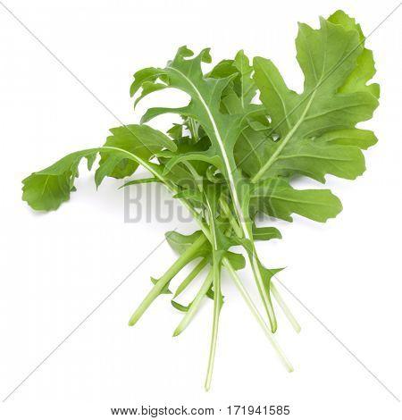 Close up studio shot of green fresh rucola leaves isolated on white background. Rocket salad or arugula.