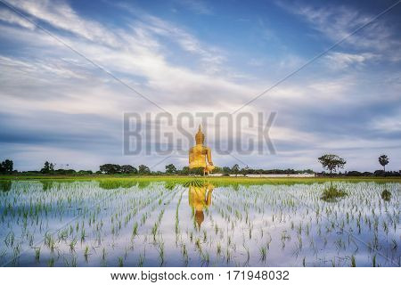 Big gold buddha statue wat muang angtong thailand temple and blue sky and clouds and mirror reflection and nature background
