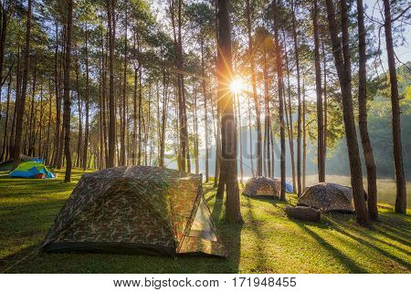 Sun rise at Pang-ung Pine forest in Thailand. Popular place for Set up the tent camping and travel in Mae Hong Son on Winter pang ung pangung