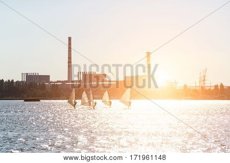 Windsurfers are trained on a large lake. Evening shot.