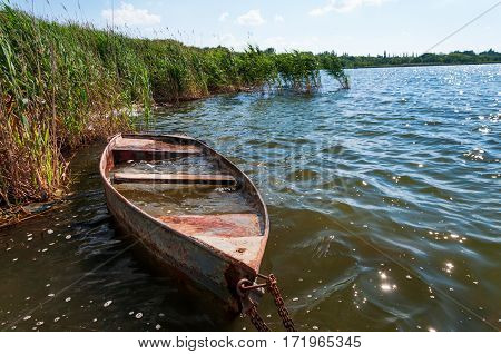 Old flooded boat in the reeds. Sunny day at the lake.