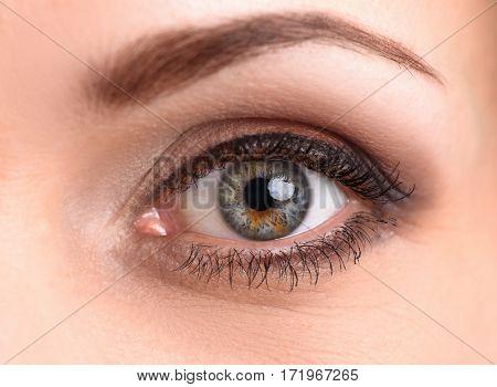 Macro Of Female Eye