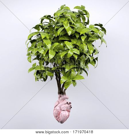plant and heart organ as roots 3d illustration
