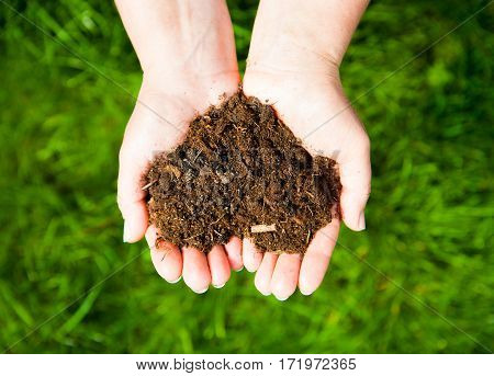 Hands Holding An Earth Heart On Natural Green Background. Ecology Concept
