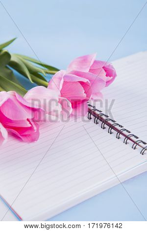 Bouquet Of Tender Pink Tulips With Open Notebook On Blue Wooden Background