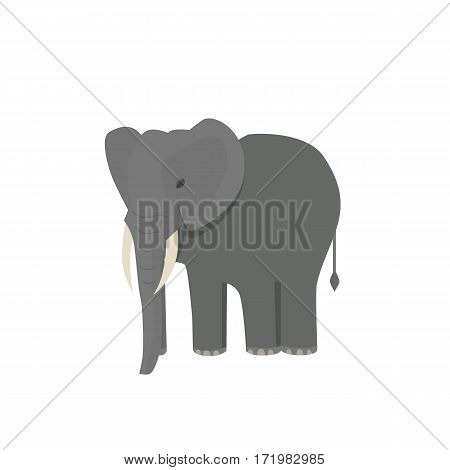 Cute little african elephant isolated on white. Baby animal african zoo vector illustration eps10