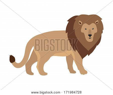 Lion king illustration. Funny lion standing isolated on white background. Animal adorable predator lion vector character. Lion icon. Cute lion cartoon. Wildlife character