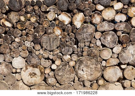Log Background From Round Old Wooden
