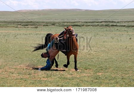 Hohhot, Inner Mongolia - Jul 14, 2011: Traditional Mongolian Fun - Young Man Riding A Horse At Full