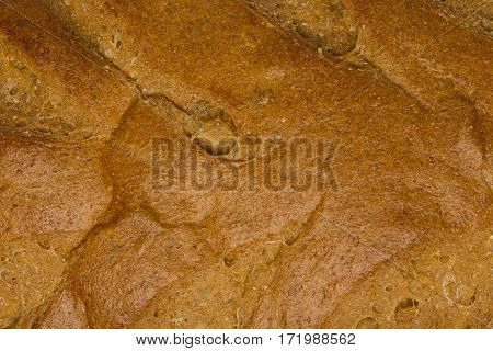 The top of a loaf of honey wheat bread.