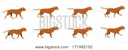 Collection of icons with fast running dogs. Red angry animal with long tail. Animation picture with different creature movements. Actions. Speed. Simple cartoon style. Side view. Flat design. Vector
