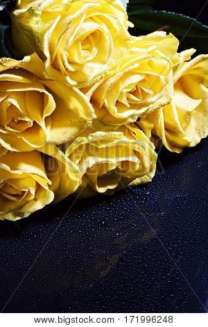 A Bouquet Of Yellow Roses With Droplets On A Dark Background