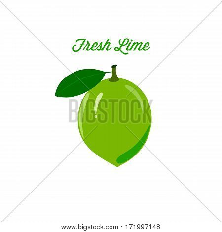 Set of ripe juicy lime fruit on a white background