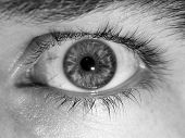 close up image of an eye ball black and white poster
