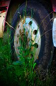 Old Oregon logging truck wheel with weeds growing around tire, in a field, idle. poster