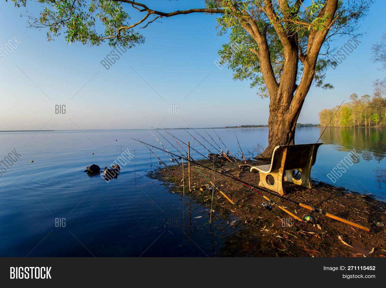 Carp Fishing Rods, Image & Photo (Free Trial)   Bigstock