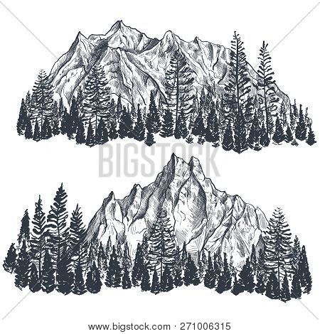 Vector Set Of Hand Drawn Graphic Mountain Ranges With Pine Forest.