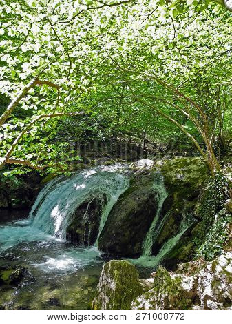 Cascading River With Beautiful Rapid In The Green Spring Forest. Arch Of Green Tree Branches Above T