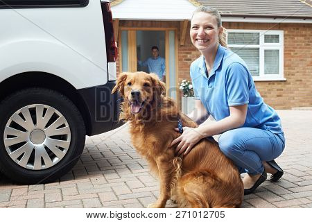 Portrait Of Woman With Van Running Dog Walking Service