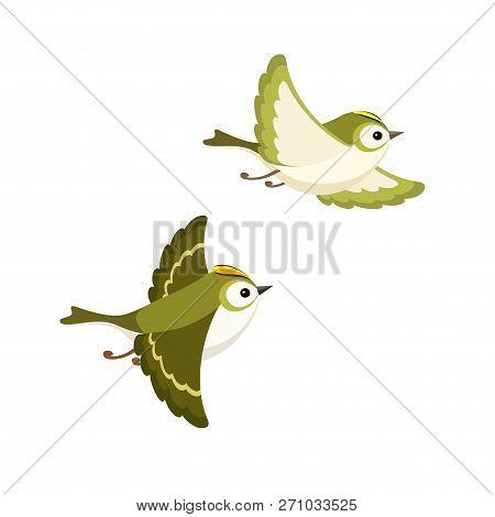 Vector Illustration Of Cartoon Flying Goldcrest Pair (the Smallest European Bird) Isolated On White