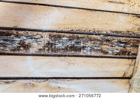Rotting Due To Humidity And Growth Of Molds  Wooden Roof Structures. Wood Roof Construction Damaged