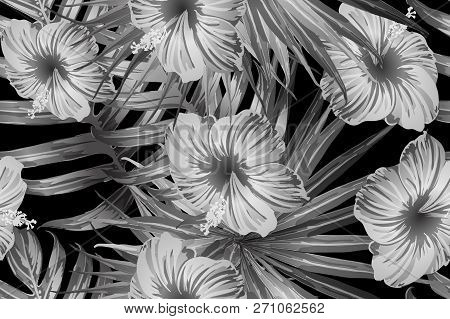 Black White Exotic Pattern. Monstera Leaves And Hibiscus Flowers In Summer Print.  Saturated Large F
