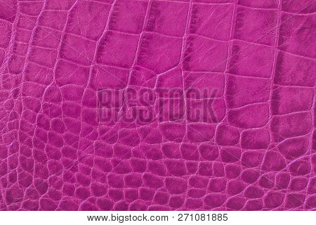 Texture of pink purple genuine leather close-up, with embossed scales reptiles, fashion trend pattern poster