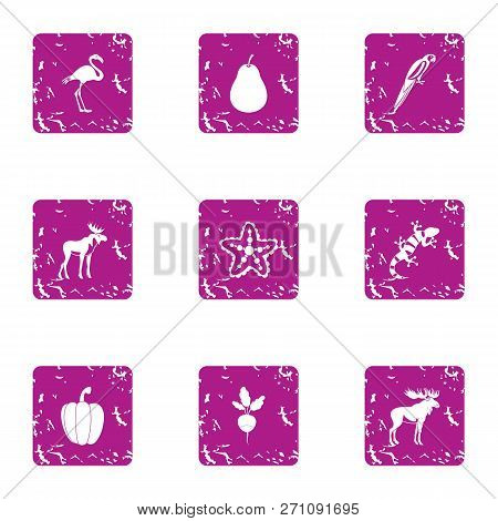 Wilderness Territory Icons Set. Grunge Set Of 9 Wilderness Territory Icons For Web Isolated On White