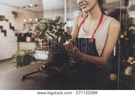 Portrait Of Beautiful Girl Florist In Flower Shop. Young Smiling Girl Florist Caring For A Plant Whi